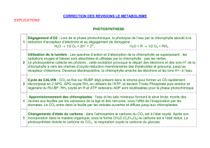 CORRECTION DES REVISIONS LE METABOLISME