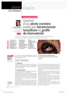 Abcès de cornée : que faire ou ne pas faire en urgence