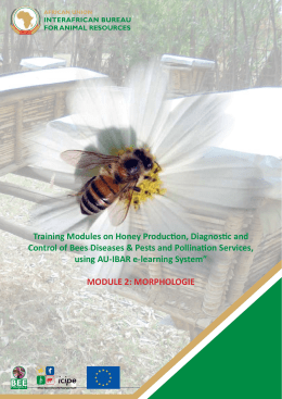 Training Modules on Honey Production, Diagnostic and - AU-IBAR