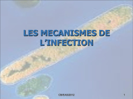 les mecanismes de l`infection