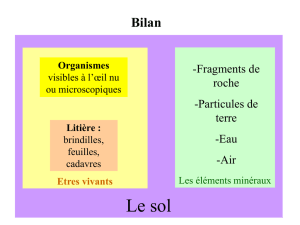 bilan 1ère partie (format Power Point)