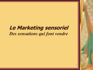 Marketing sensoriel - Eco
