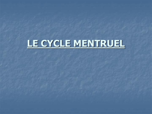 le cycle mentruel