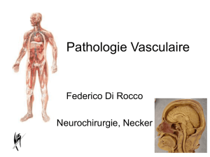 IFSI_PATHOLOGIE_VASCULAIRE_light