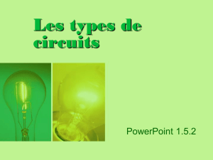 PowerPoint 1.5.2, Les types de circuits