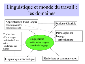 UE LLSDL105domaines_cours2_2006 (PPT, 152 Ko)
