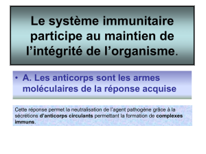 les macrophages