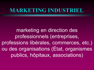 MARKETING INDUSTRIEL
