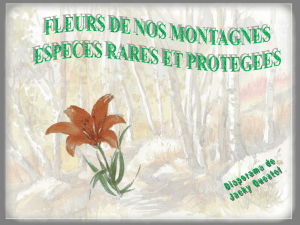 fleurs-protegees.pps