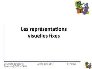 representations_visuelles_fixes_1314 - Tecfa