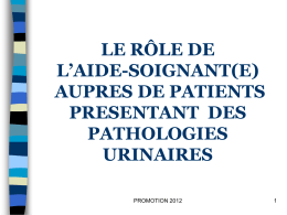 pathologies urinaires 28/03