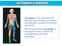 07 Systemes et Organes