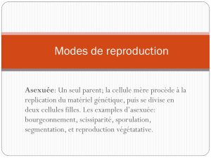 Modes de reproduction