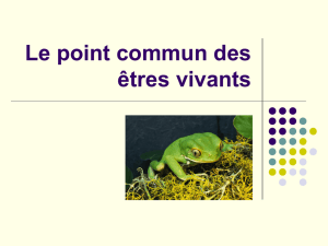 Le point commun des êtres vivants