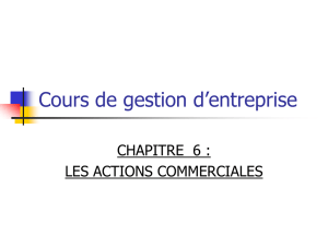 cours 6 actions commerciales