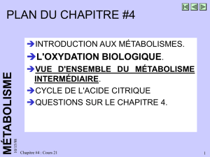 Cours 21