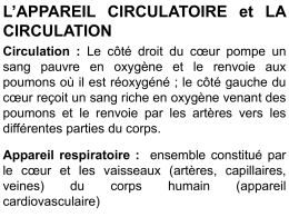 La circulation sanguine A