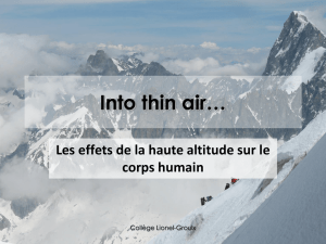 Into thin air - Collège Lionel