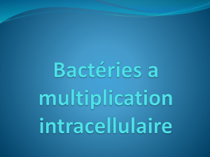 Bactéries a multiplication intracellulaire