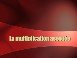 La multiplication sexuée - Le Site Web de Jeff O`Keefe