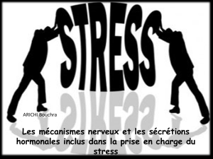 stress - WordPress.com