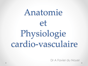 physio-et-anat-ide-3