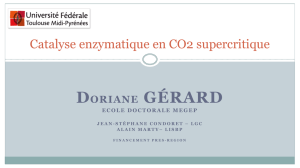 Template_seminaire_APR2013_Doriane