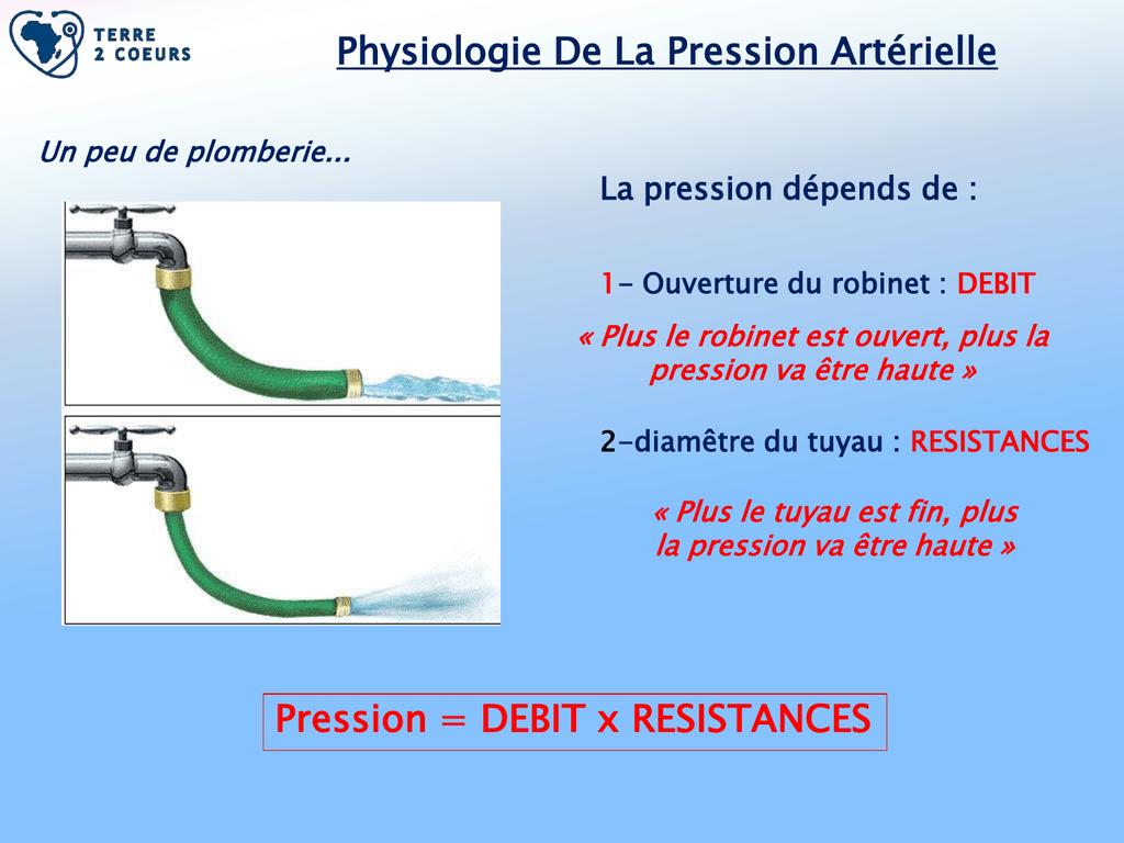 Physiologie De La Pression Artérielle Pression = DEBIT x