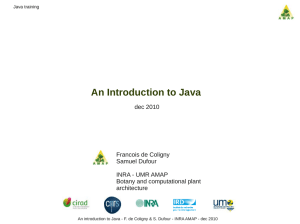 An Introduction to Java - Capsis