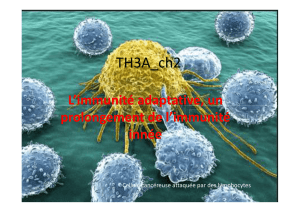 TH3A_ch2_immunite adaptative [Mode de compatibilité]