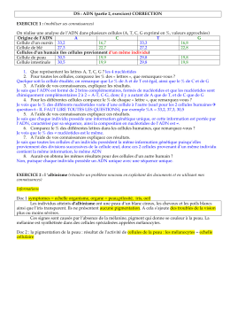 DS : ADN (partie 2, exercices) CORRECTION EXERCICE 1