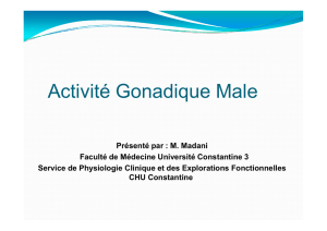 Physiologie gonades 2 (male) - Université de Constantine 3