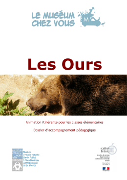 15 Les Ours