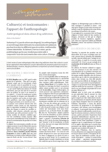 Culture(s) et toxicomanies : l`apport de l`anthropologie
