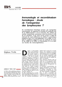ontogenèse des lymphocytes T - iPubli
