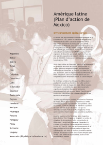 Amérique latine (Plan d`action de Mexico)