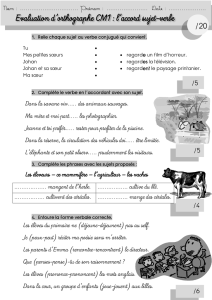Evaluation d`orthographe CM1 : l`accord sujet