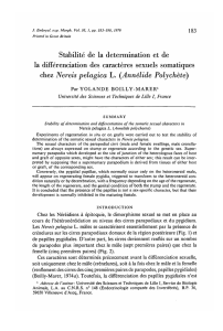 Stabilite de la determination et de la differentiation
