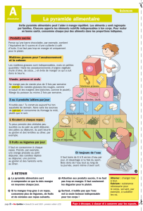 054917_P2_D12_pyramide_alimentaire