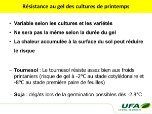 Résistance au gel des cultures de printemps