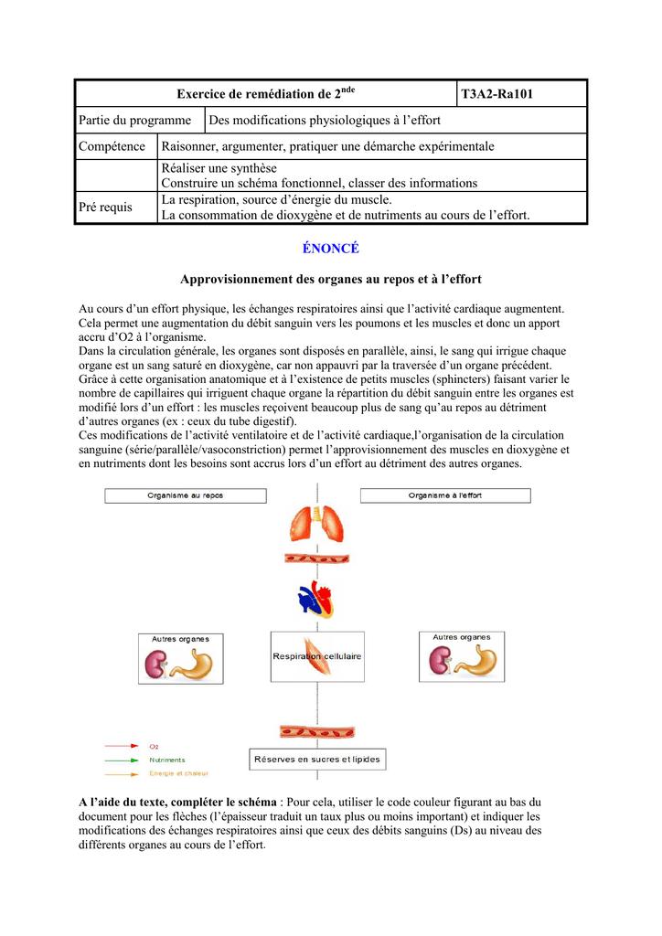 Ra101 Exercices De Remediation