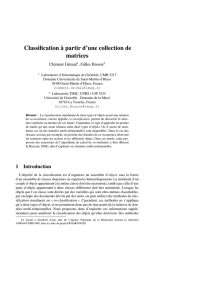 Classification à partir d`une collection de matrices