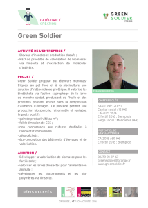 Green Soldier - Crisalide Eco