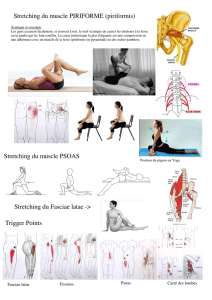 Stretching du muscle PSOAS Stretching du muscle PIRIFORME