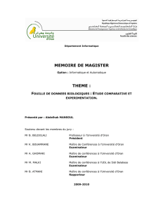 memoire de magister theme - Université d`Oran 1 Ahmed Ben Bella