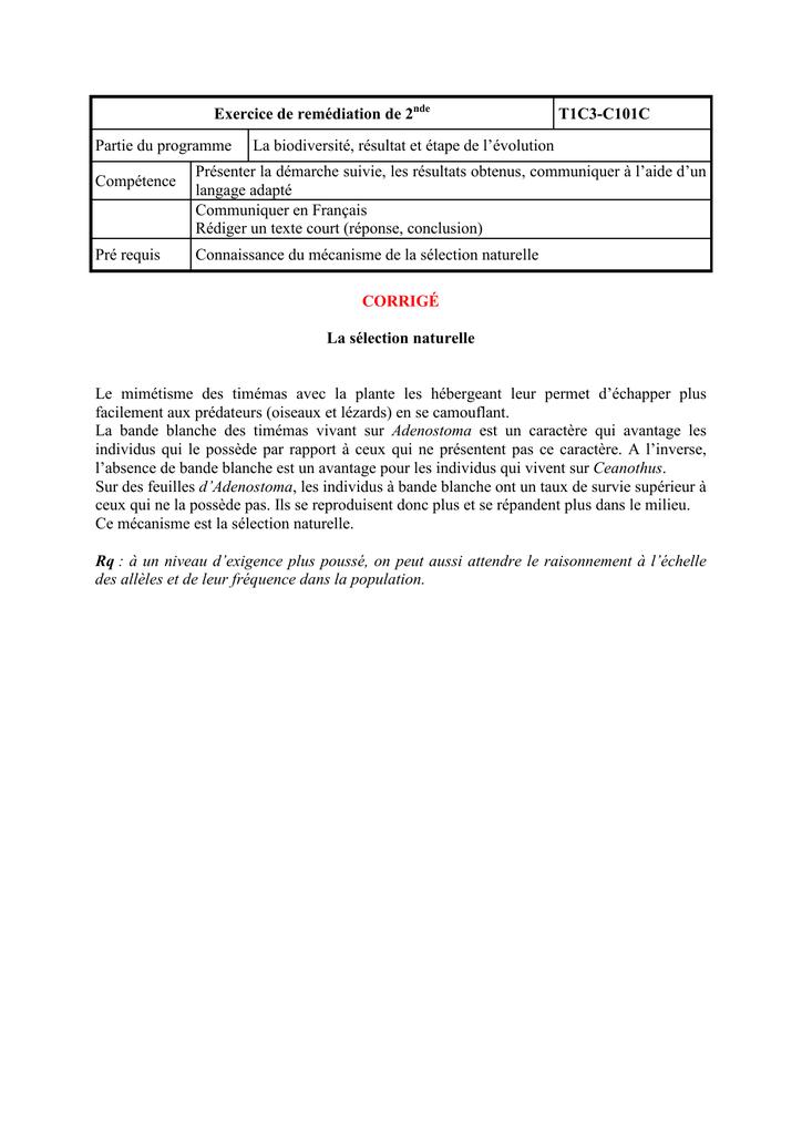 C101c Exercices De Remediation
