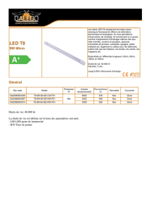 Tube LED 60cm - Luminus Leds