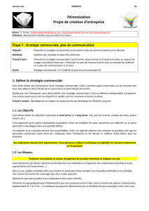 Strategie commerciale / communication