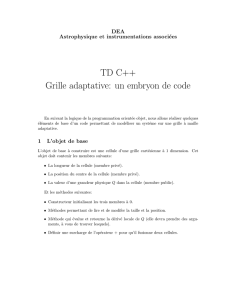 TD C++ Grille adaptative: un embryon de code