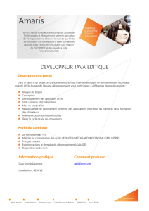 developpeur java editique